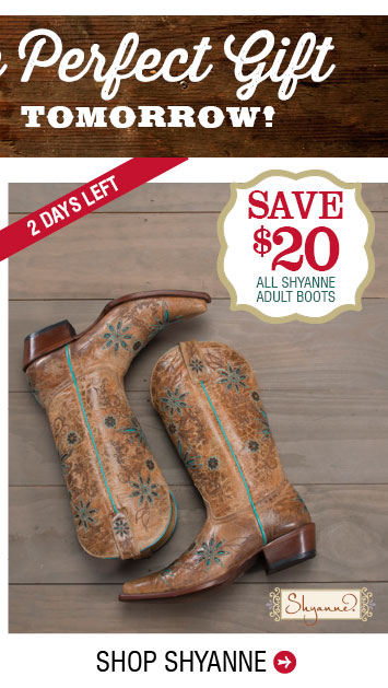 graphic relating to Boot Barn Coupons Printable named Boot barn coupon codes 20 off : Pizza hut heavy pizza discount coupons
